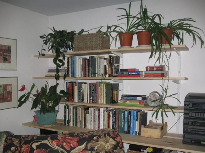 shelves 002